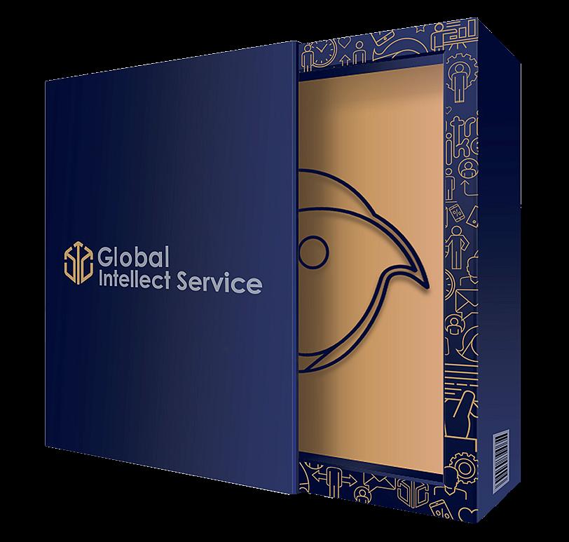 GLOBAL INTELLECT SERVICE — F.Z.C.